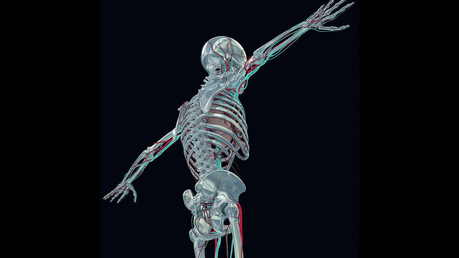 Эволюция полным ходом. Как тело человека изменилось за сто лет