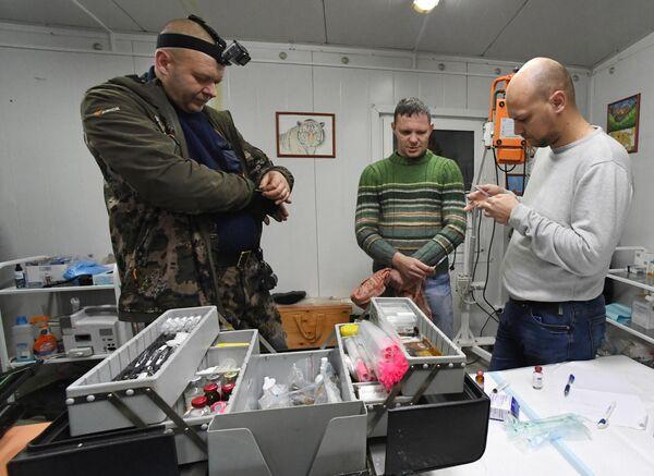 Сотрудники Центра реабилитации и реинтродукции тигров и других животных во Владивостоке