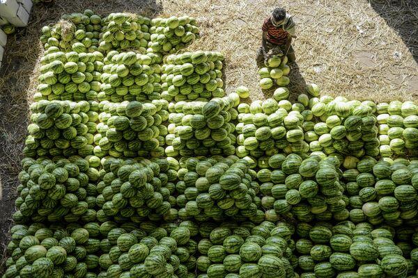 Продавец арбузов на оптовом фруктовом рынке Гаддианнарама в Хайдарабаде