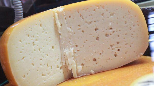 Сырный фестиваль в Музее Москвы