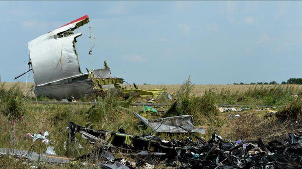 На месте крушения малайзийского Boeing 777 в районе деревни Грабово недалеко от Шахтерска в Донецкой области