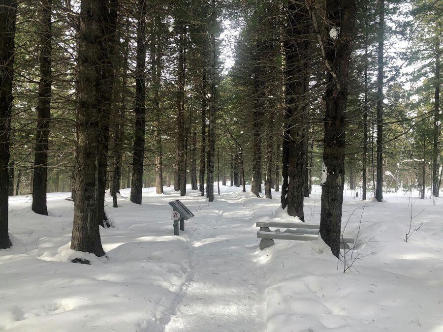 Экологическая тропа в заповеднике, Байкал