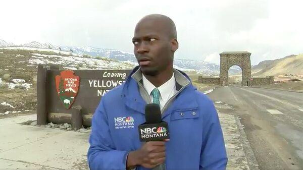 Реакция репортера на приближающееся стадо бизонов