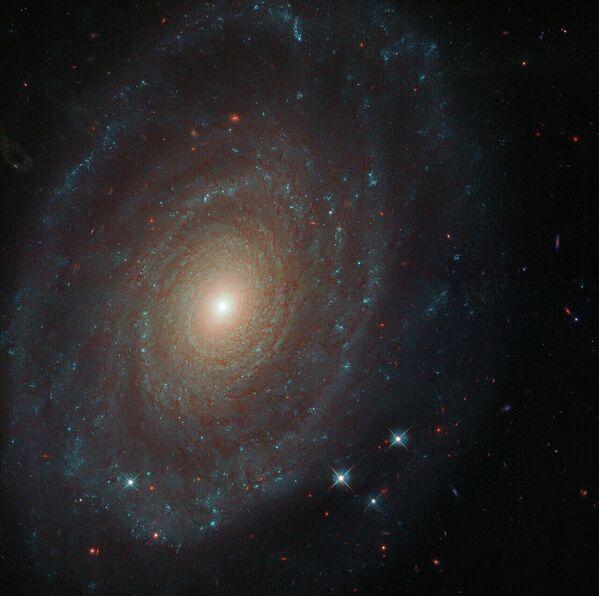 Спиральная галактика NGC 691