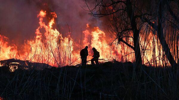 Сотрудники противопожарной службы МЧС РФ тушат возгорание камыша на улице Набережная в Анапе