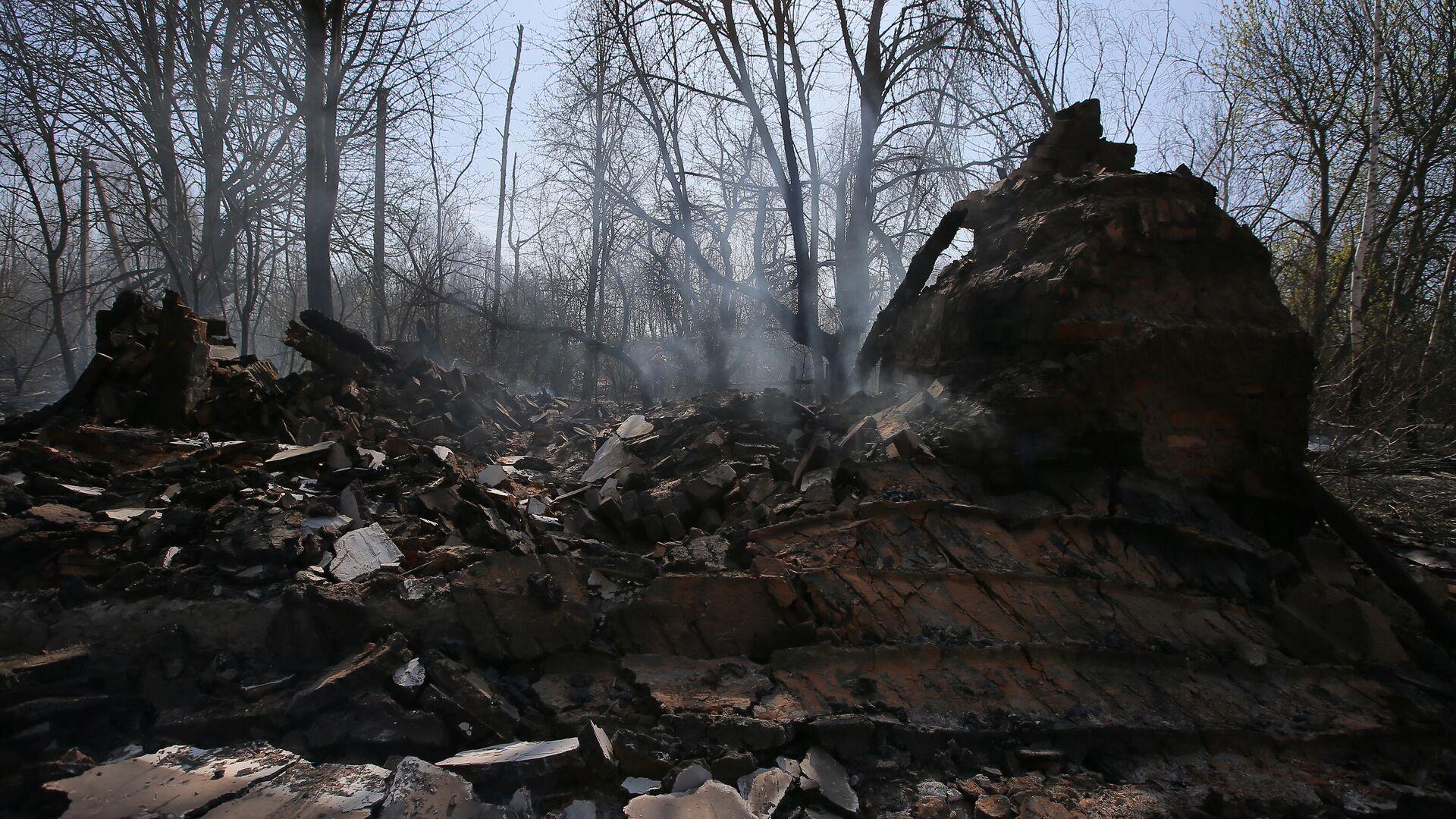 Сгоревший частный дом в результате пожара в зоне отчуждения Чернобыльской АЭС  - РИА Новости, 1920, 22.06.2020