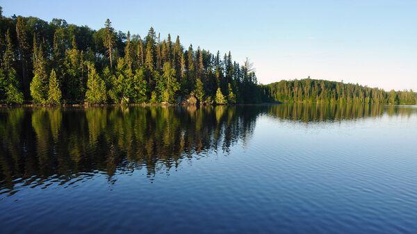 Озеро Липово в Новгородской области