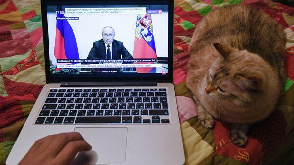 Трансляция совещания президента РФ Владимира Путина с главами регионов по борьбе с распространением коронавируса в России на экране ноутбука