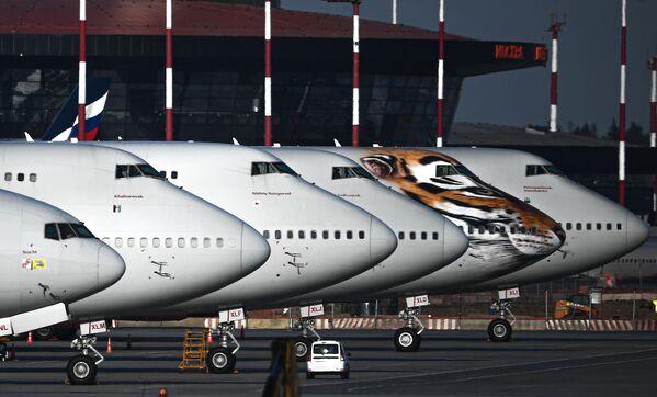 Самолеты авиакомпания Россия на стоянке в аэропорту Шереметьево