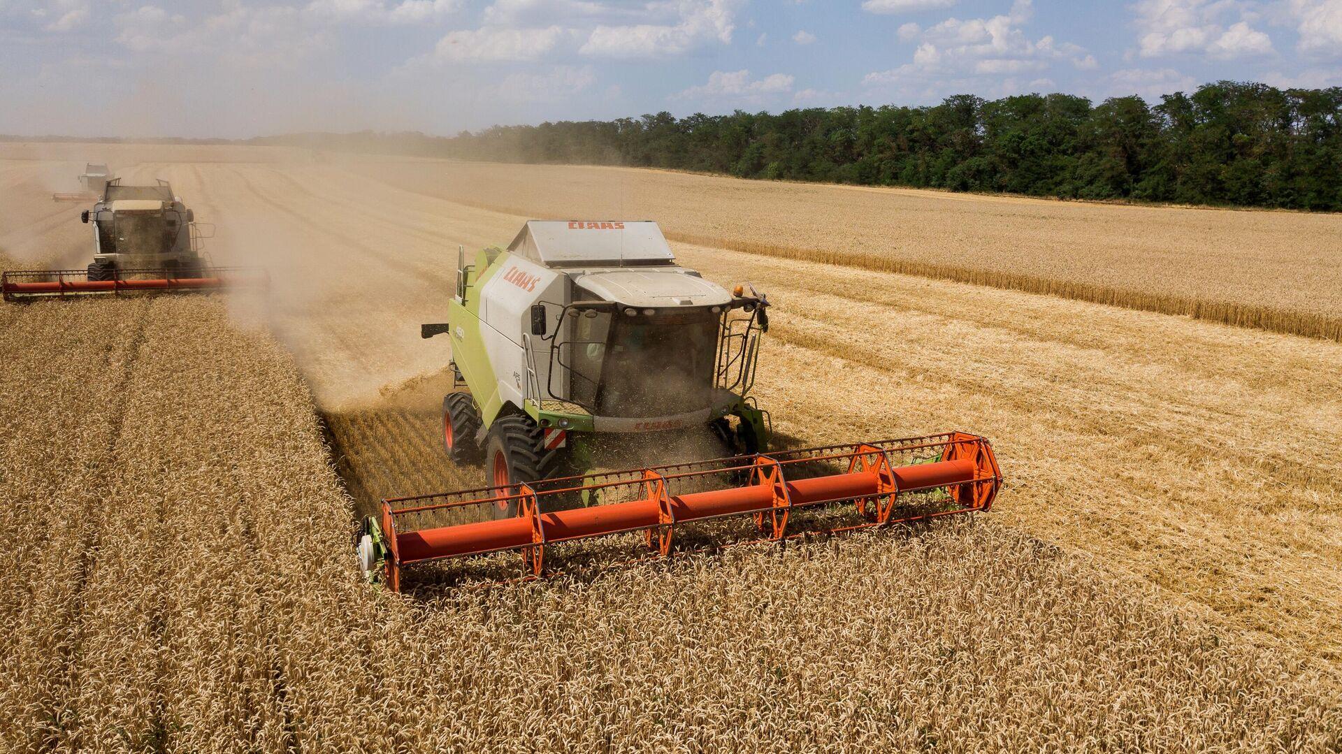В России создадут единую государственную систему прослеживаемости зерна