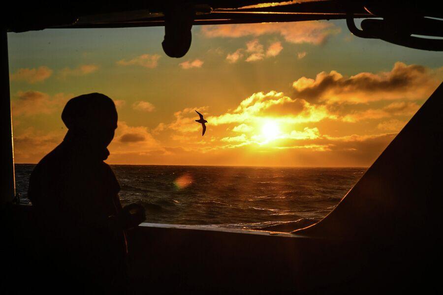 Вид с борта исследовательского судна Балтийского флота Адмирал Владимирский в районе островов Аделейд и Земли Александра I во время плавания к антарктической станции Беллинсгаузен