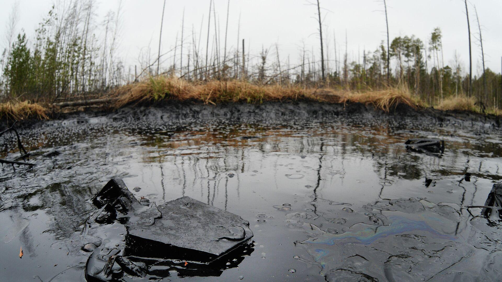 Разлив нефти - РИА Новости, 1920, 14.05.2021