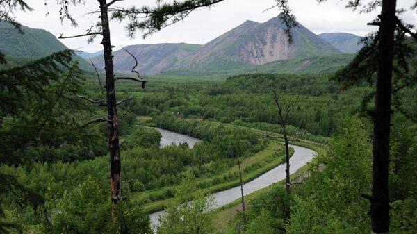 Вид на реку Быструю со смотровой площадки в Быстринском природном парке на Камчатке