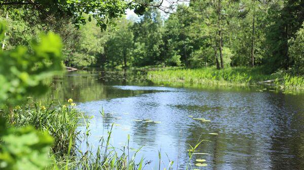Выяснение причины загрязнения реки Поля в подмосковной Шатуре