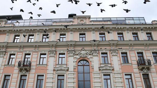 Стая голубей у здания на Тургеневской площади в Москве