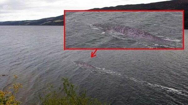 Изображение, снятое у озеро Лох-Несс