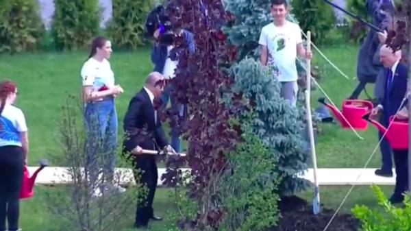 Путин и Лукашенко приняли участие в акции Сад памяти