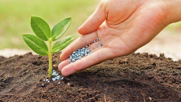 Новое экологически безопасное и эффективное удобрение создали в России