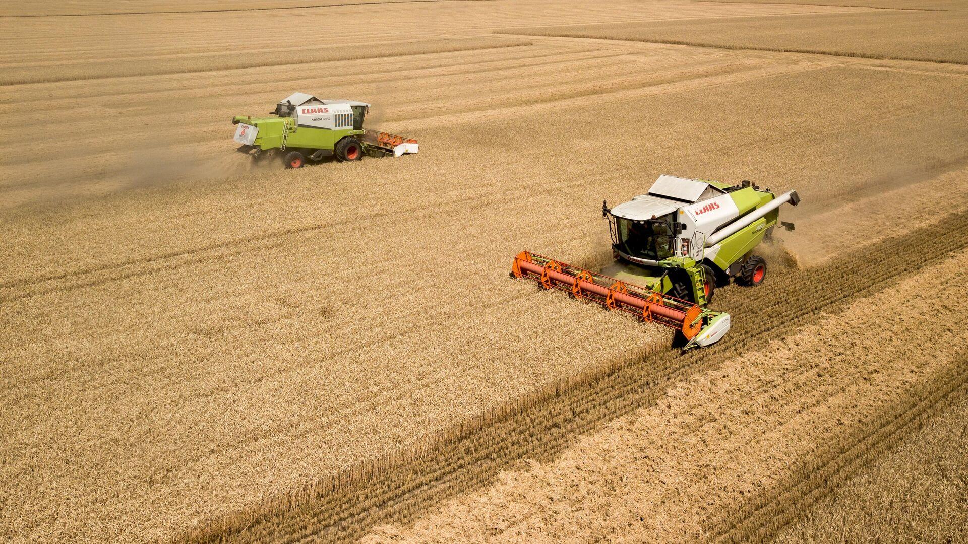 1574557011 0:0:3198:1799 1920x0 80 0 0 44bf9768e86b3009f30f1c458b4d4a48 - Эксперты спрогнозировали второй по объему урожай зерна в истории России