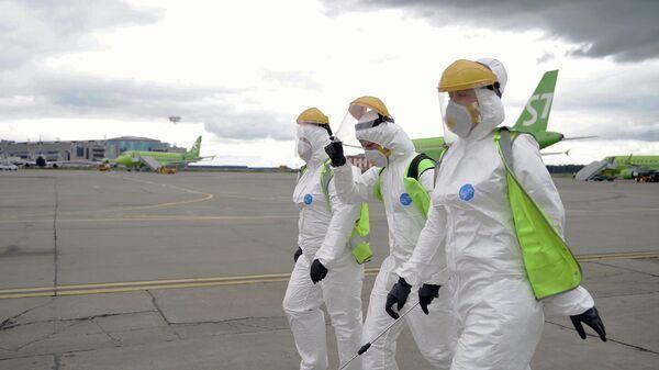 Сотрудники аэропорта Домодедово перед началом дезинфекции салона самолета