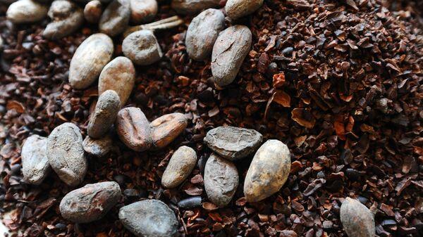 Какао бобы и какао-крупка
