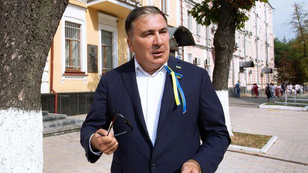 Глава Исполнительного комитета реформ в составе Национального совета реформ при президенте Украины Михаил Саакашвили на Дне независимости Украины