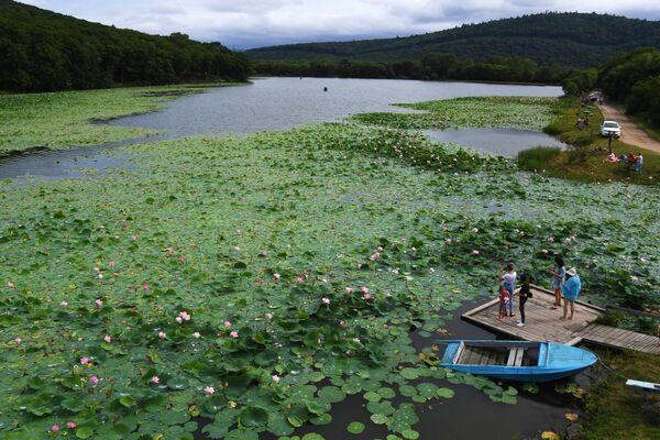 Отдыхающие на озере лотосов под Уссурийском в Приморском крае