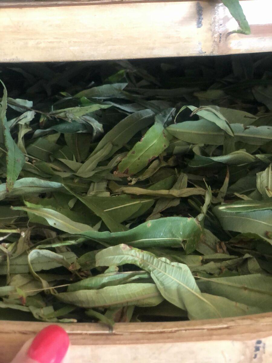 Саха Чай на производстве