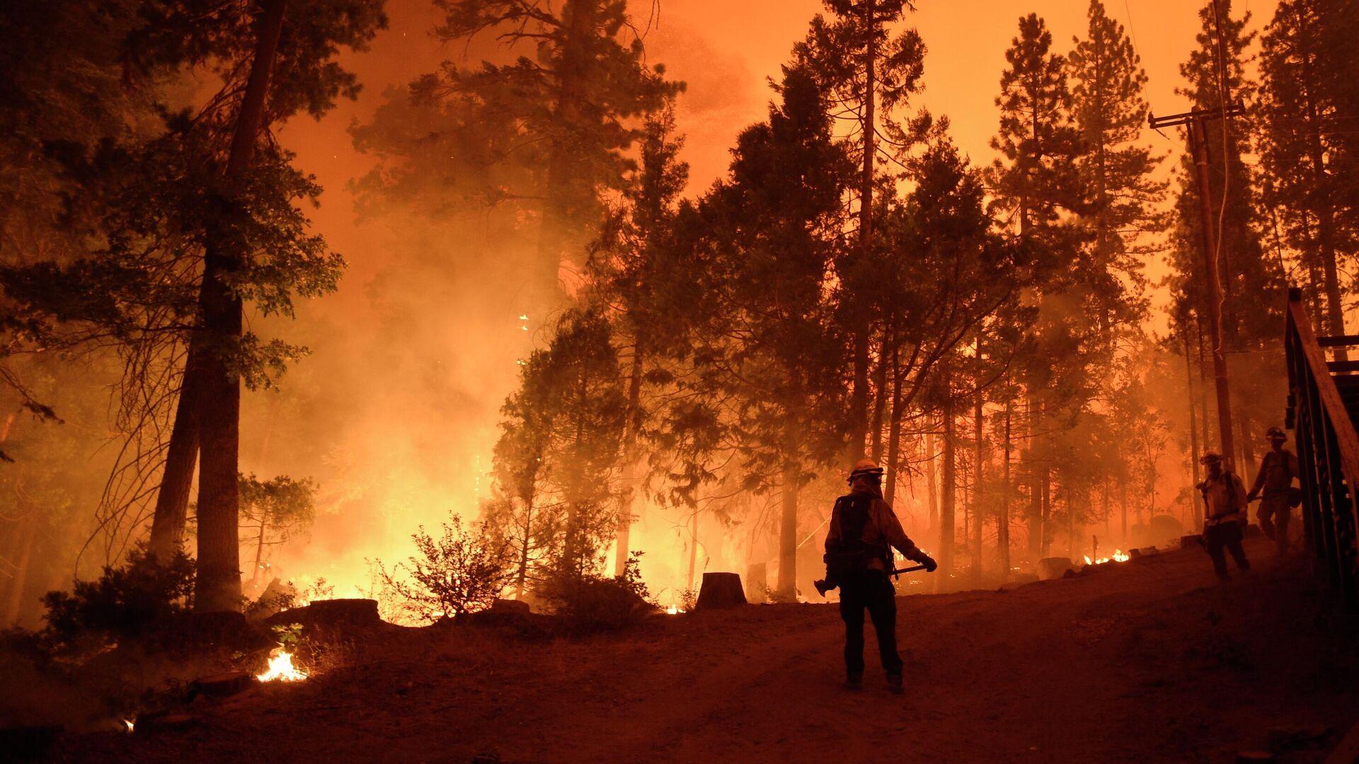 Пожарные во время тушения лесного пожара в штате Калифорния - РИА Новости, 1920, 12.09.2020