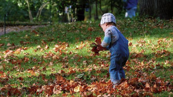 Ребенок гуляет в Приоратском парке города Гатчина под Санкт-Петербургом