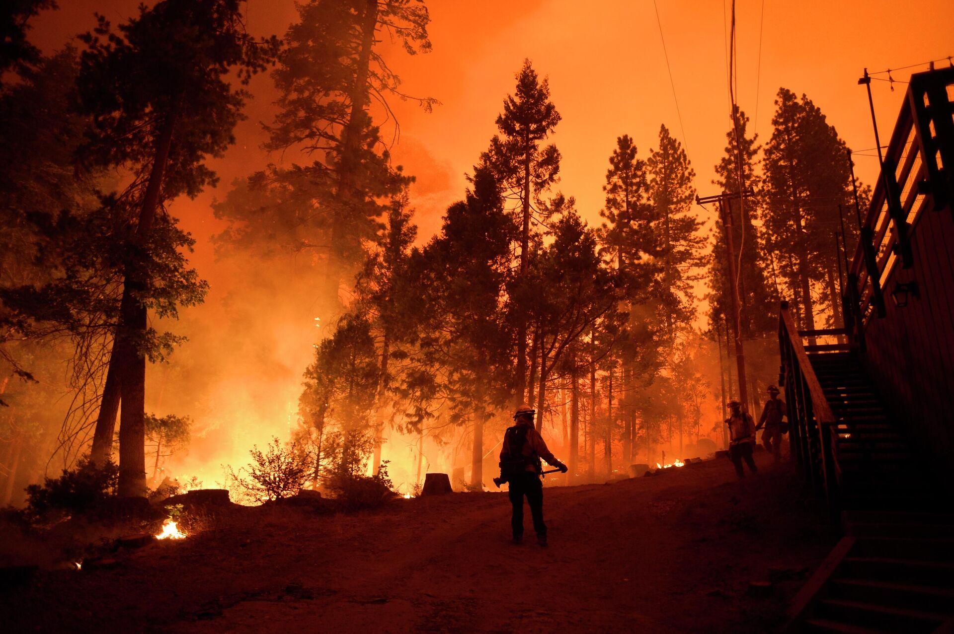 Пожарные во время тушения лесного пожара в штате Калифорния - РИА Новости, 1920, 22.12.2020