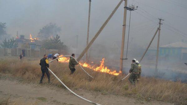 Пожар из-за упавшего на ЛЭП дерева в селе Николаевка Воронежской области