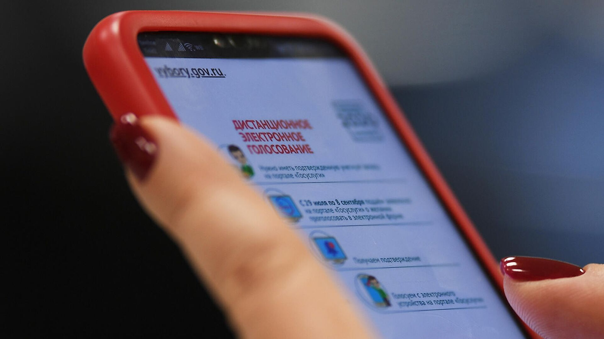 Жириновского зарегистрировали для электронного голосования