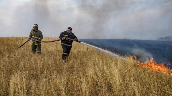Сотрудники МЧС РФ тушат лесной пожар в Воронежской области