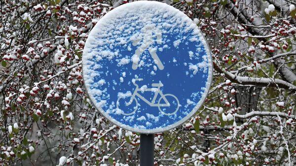 Дорожный знак после первого снегопада