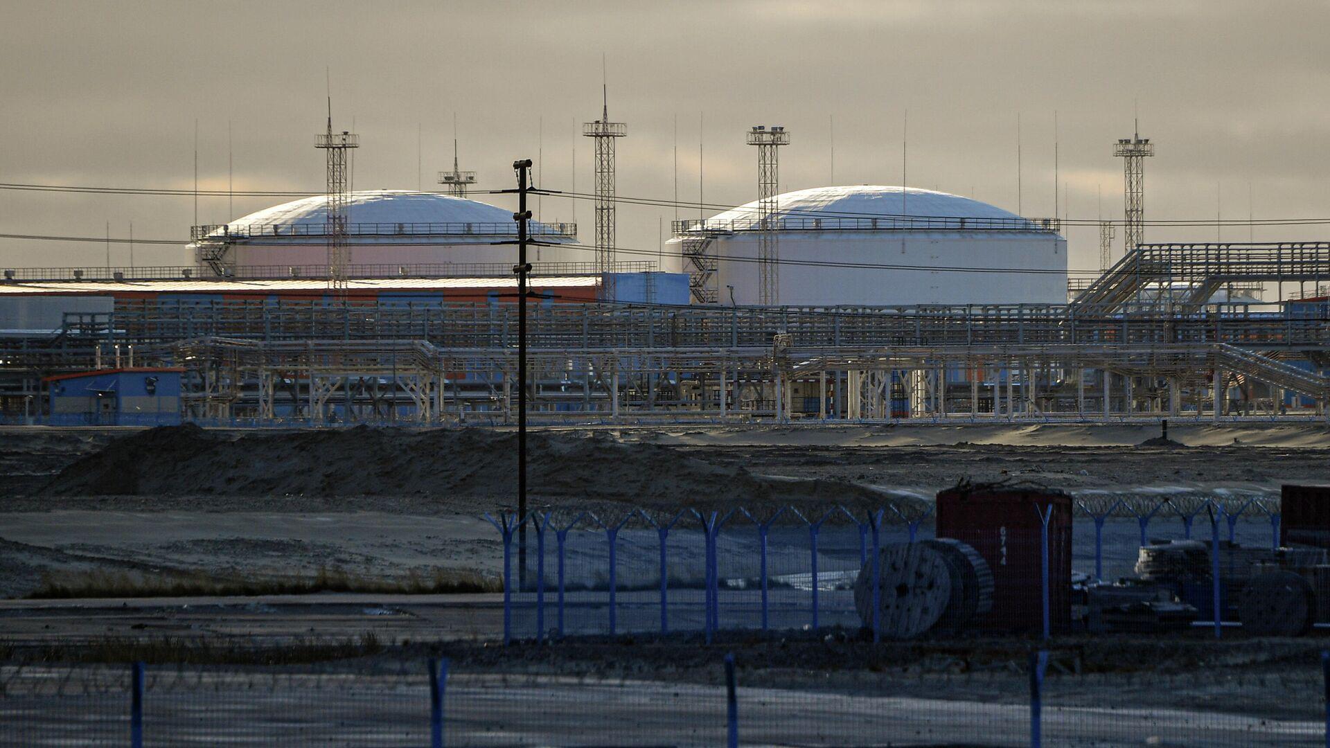 Завод по производству сжиженного природного газа Ямал СПГ в морском порту Саббета - РИА Новости, 1920, 16.11.2020
