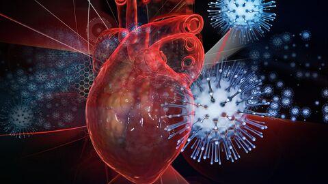 Влияние коронавируса на сердце