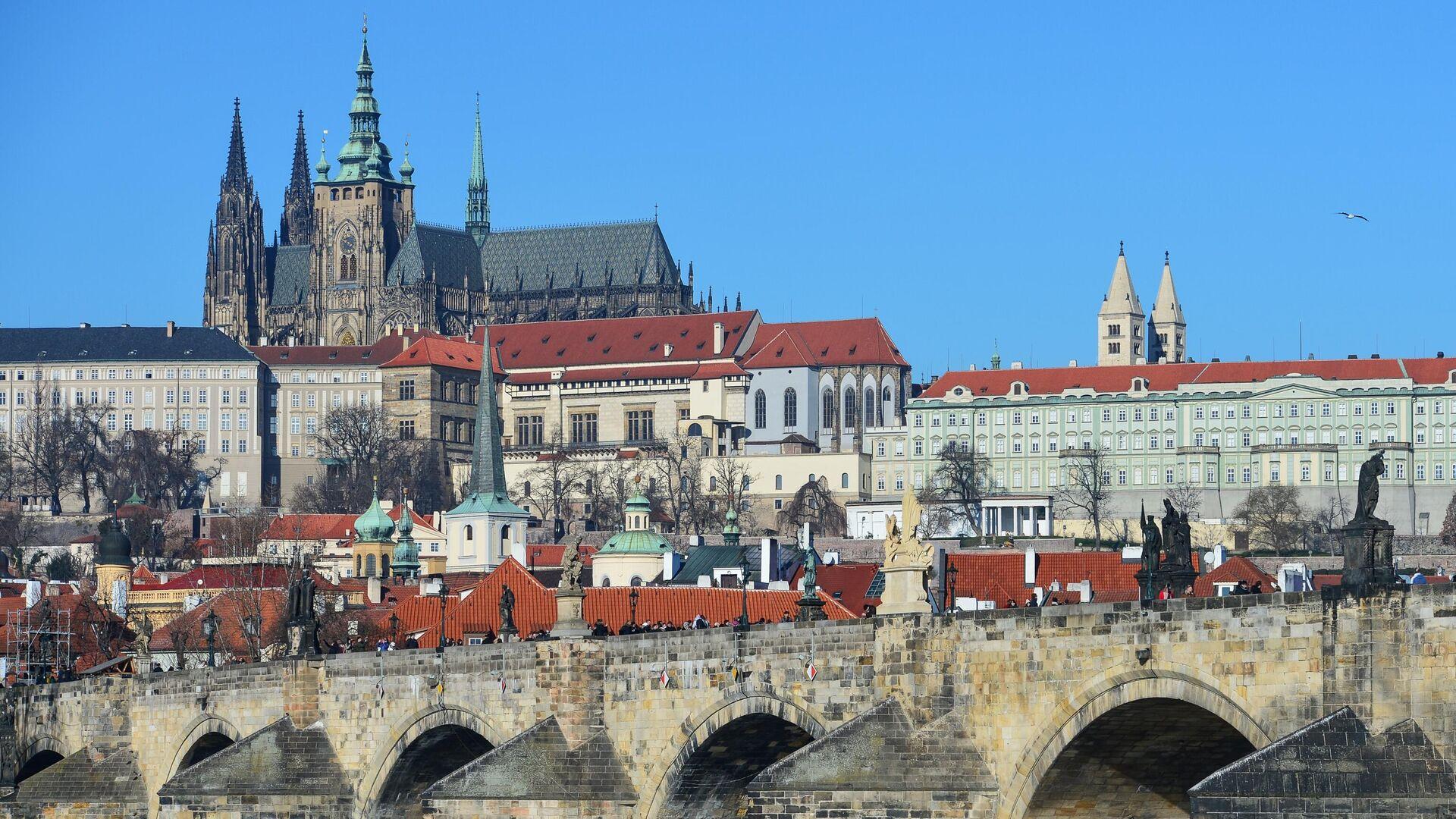 Чехия должна получить отпор в виде санкций, заявили в Совфеде