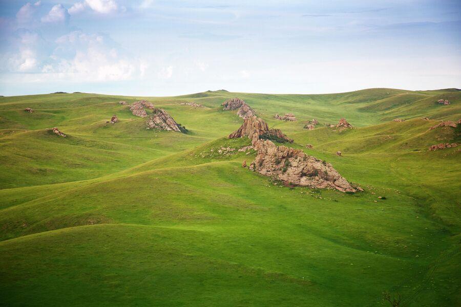 Заповедник Даурский кордон Адон-Челон, горная степь