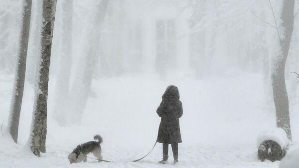 Женщина с собакой в парке Братцево в Москве