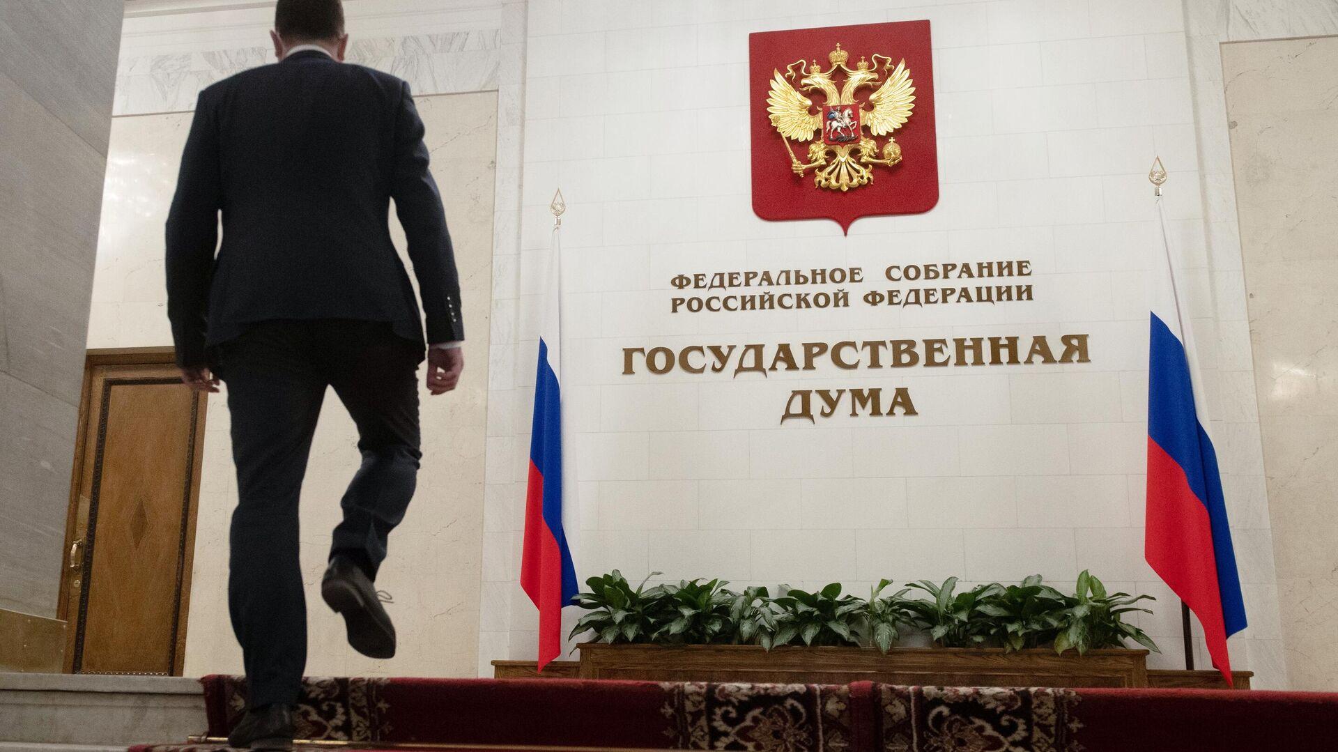 Комитет Госдумы обсудил организацию агитации при многодневном голосовании