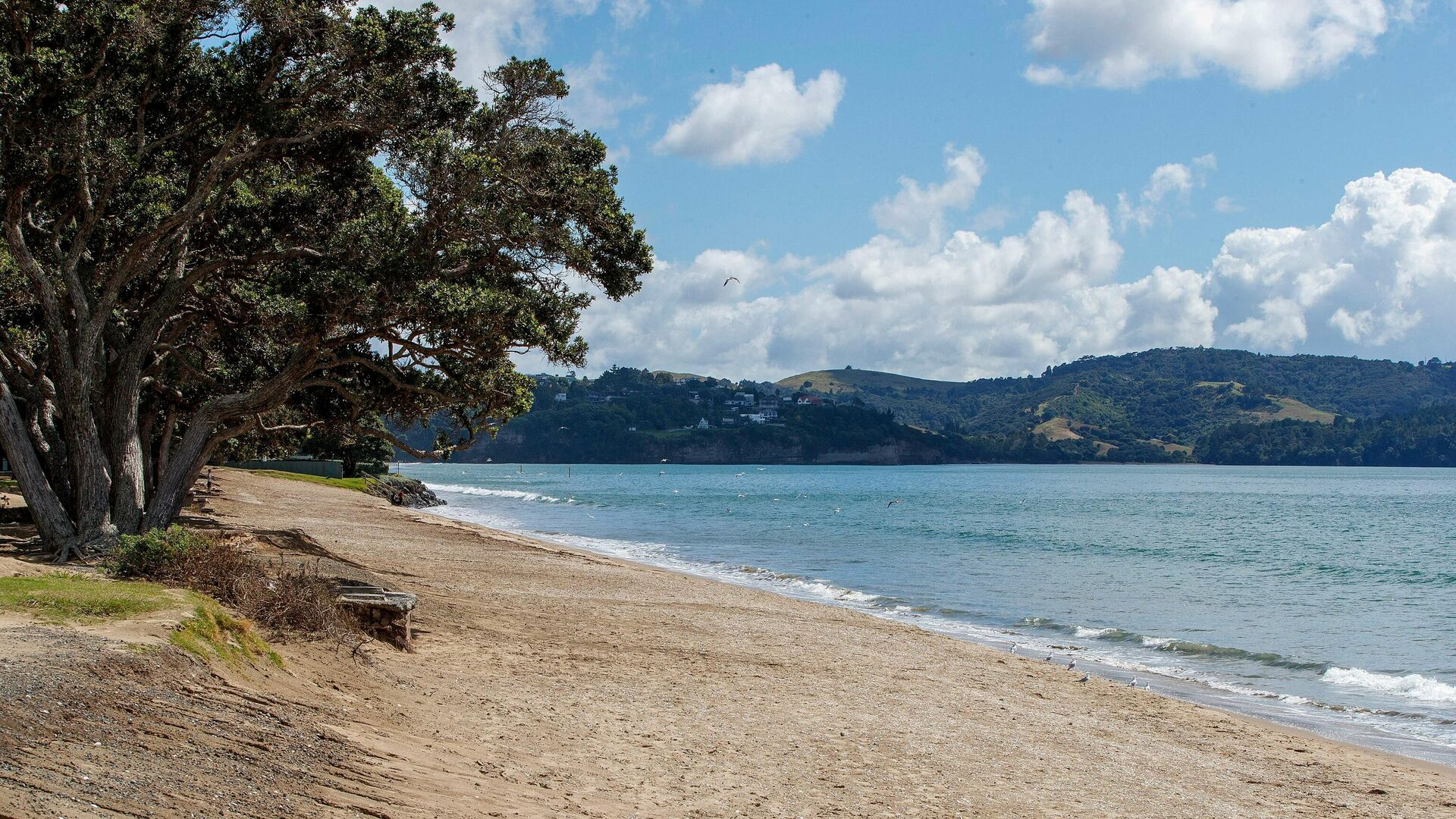 Пляж, опустевший после предупреждения о цунами в Ореве, Новая Зеландия - РИА Новости, 1920, 05.03.2021