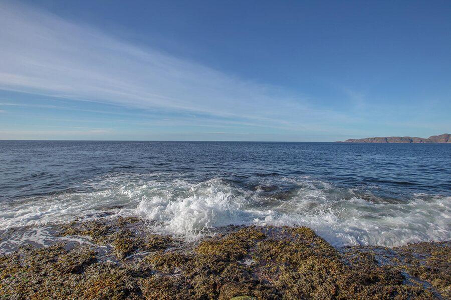 Берег Баренцева моря, Териберка
