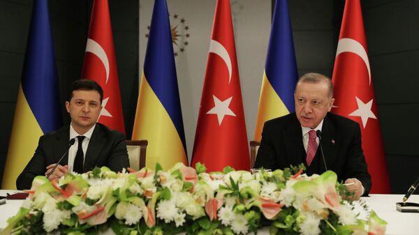 Президент Турции Тайип Эрдоган и президент Украины Владимир Зеленский во время встречи в Стамбуле, Турция