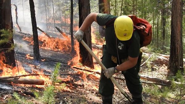 Борьба с лесным пожаром