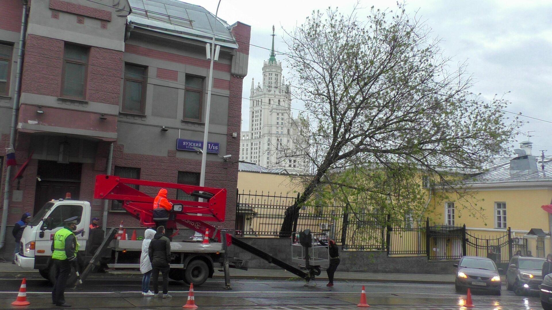 Власти Москвы рассказали о последствиях урагана в городе