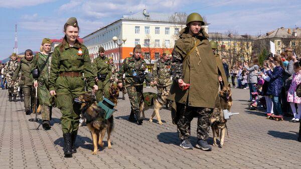 Полк собак прошагал торжественным маршем в День Победы в кузбасском Междуреченске