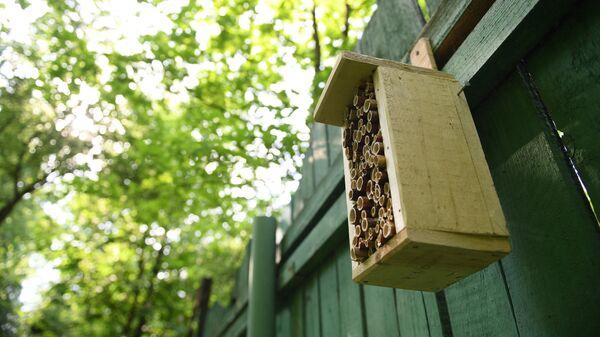 Домик для насекомых в природно-историческом парке Кузьминки-Люблино