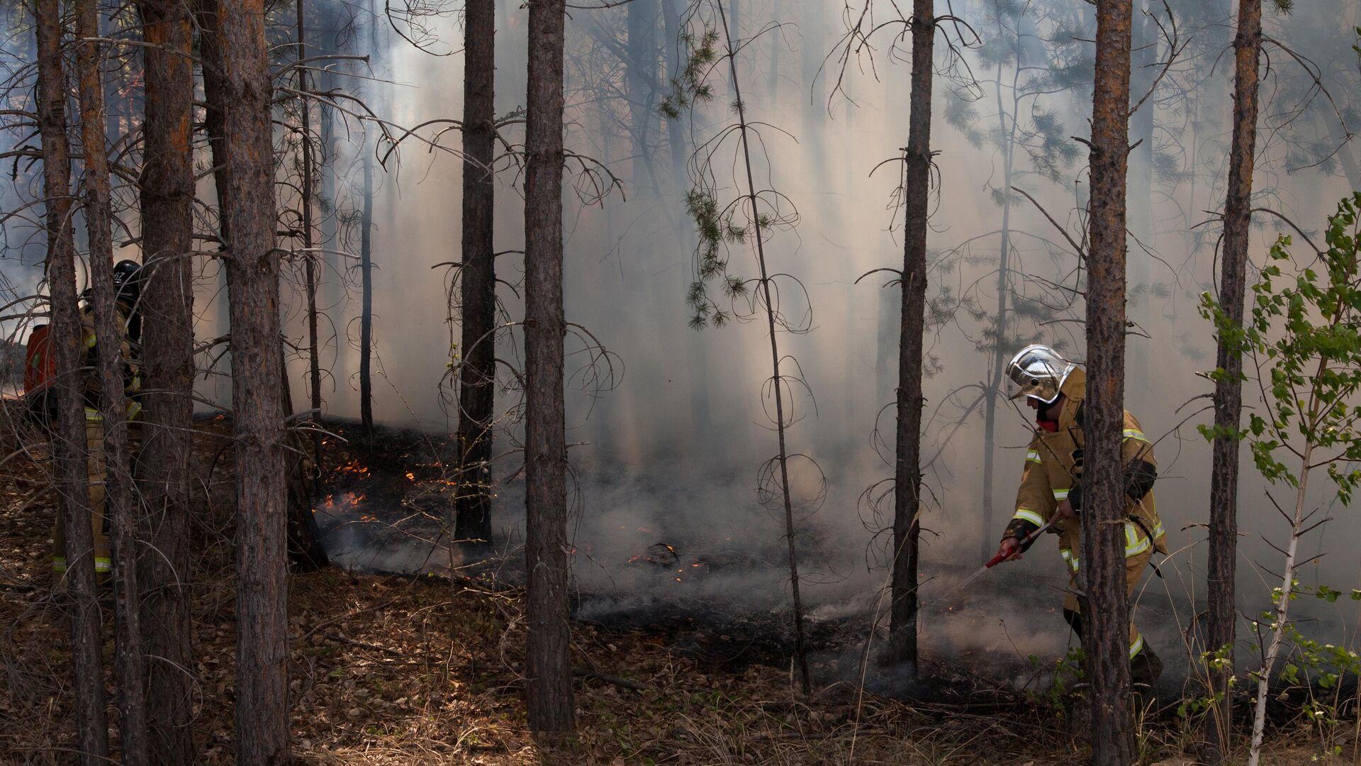 Рослесхоз предупредил об увеличении риска природных пожаров в регионах