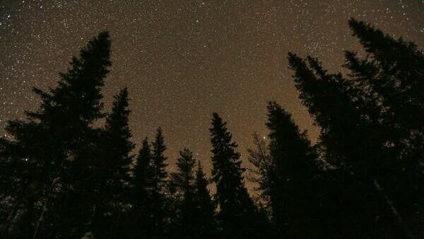 Звездное небо над городом Онкамо в Финляндии. Павел Львов / РИА Новости